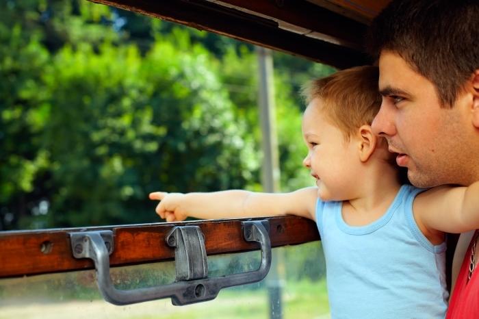 The strawberry train to aranjuez madrid