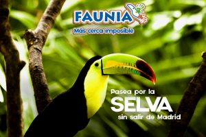 Activities with Kids in Madrid - Faunia