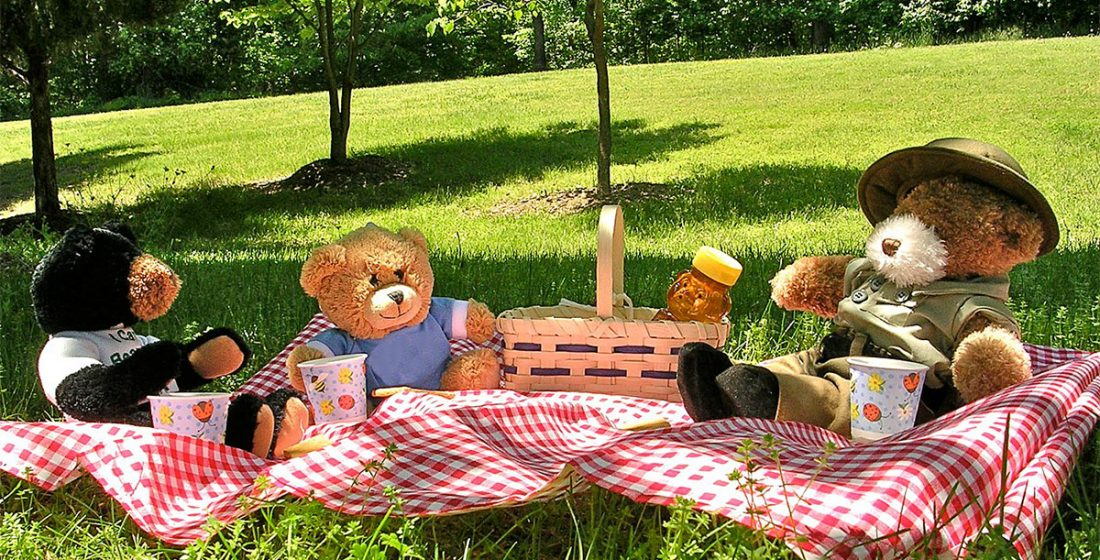 Best plans for a family picnic in Madrid